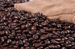 A lot of coffee beans Stock Photos