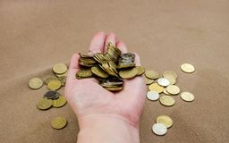 a lot of coins in the female hand stock image
