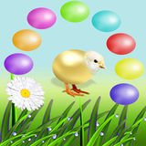 Lot of colourful Easter eggs Royalty Free Stock Images
