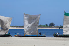 A lot of dhows on the shore Stock Photos