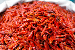 Lot of dried chili on dispaly in Middle eastern food market Stock Photos