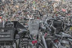 A lot of Dutch bikes stock image