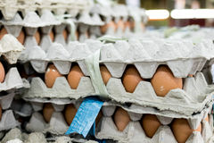A lot of egg in panel display for sale in local fresh food market, tropical Bali island, Indonesia. Royalty Free Stock Images