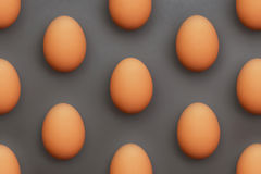 Lot of eggs Royalty Free Stock Image