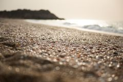 A lot of empty seashells on the shores of the Mediterranean Sea. In the setting sun Royalty Free Stock Image