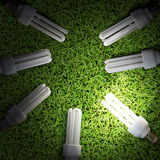 Lot of Energy-saving lamp in green grass backround Royalty Free Stock Photo