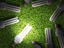 Lot of energy-saving lamps on green grass Royalty Free Stock Photography