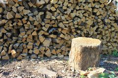 A lot of firewood Stock Photos