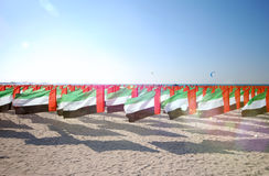 Lot of flags United Arab Emirates for the anniversary celebration on the beach. Sun ray. Stock Photography