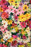 Lot of flowers Royalty Free Stock Photo