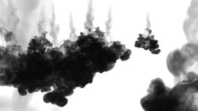 A lot of flows, black clouds or smoke, ink inject is isolated on white in slow motion. Black paint pours in water. Inky stock video