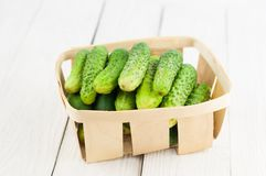 Lot of fresh green cucumbers in wicker basket on old wooden background. Lot of fresh green cucumbers in wicker basket on old white wooden background stock photo