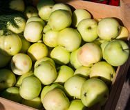 Lot of fresh green summer apple Royalty Free Stock Photo