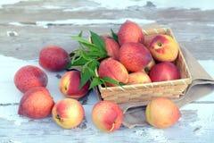 Lot of fresh peach Royalty Free Stock Photo