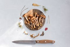 A lot of fresh, raw mushrooms on a wooden round plate with a knife. Light background. Top view Minimalism. A lot of fresh, raw mushrooms on a wooden round plate Royalty Free Stock Images
