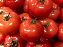 A lot of fresh red tomatoes with green tails on the display in the store. royalty free stock photo