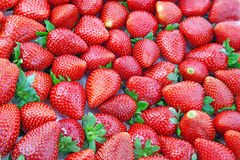 Lot of fresh strawberries . Royalty Free Stock Photos