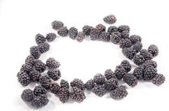 Lot of fresh sweet blackberry`s that look like something. The blackberry is an edible fruit produced by many species in the genus Rubus in the family Rosaceae stock photo
