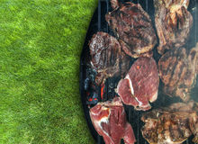 Lot of fresh tasty meet on BBQ on green grass Royalty Free Stock Photos