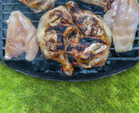 Lot of fresh tasty meet on BBQ on green grass Royalty Free Stock Images