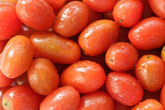 A lot of fresh tomatoes Stock Images