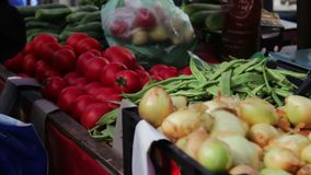 Lot of fresh vegetables on the market counter. Buyers look at the choice of fresh tomatoes, potatoes, peppers, beans stock video