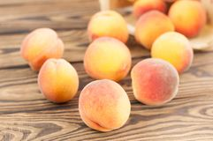 Lot of fresh whole ripe peaches poured out of wicker basket. On rustic old wooden planks royalty free stock photography