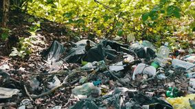 A lot of garbage falls on the ground in the forest. The problem of environmental pollution,. A lot of garbage falls on the ground in the forest. The problem of stock footage