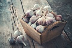 A lot of garlic in wooden box on wooden board. Royalty Free Stock Photo
