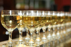 A lot of glasses of alcoholic drink in the bar. Wine Royalty Free Stock Photos