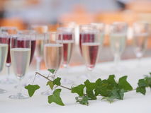 Lot of glasses with champagne Stock Photography