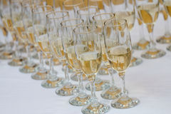 Lot of glasses filled with champagne on the party table Royalty Free Stock Photo