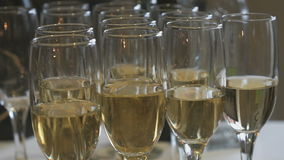 A lot of glasses with sparkling wine on table stock video footage