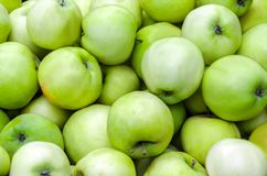 A lot of green apples on the whole frame Stock Image