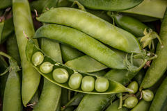 A lot of green peas in pods and one peeled Royalty Free Stock Photography