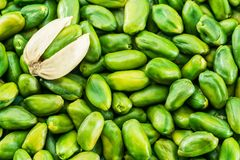 Lot of green pistachio nuts. Food background. royalty free stock image