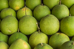 A lot of green Pomelos Royalty Free Stock Image