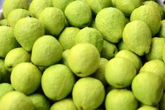 A lot of guava fruit Royalty Free Stock Image
