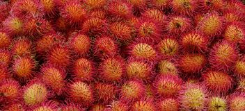 A lot of hairy rambutan fruits at a market. A lot of hairy rambutan fruits at a local market in Chiang Mai, Thailand Royalty Free Stock Images