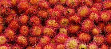 A lot of hairy rambutan fruits at a market. A lot of hairy rambutan fruits at a local market in Bangkok, Thailand Stock Images