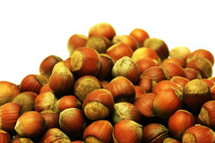 A lot of hazel nuts over white Royalty Free Stock Photos