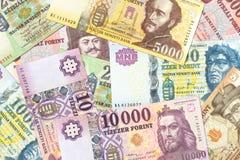 A lot of hungarian forint bank notes. Specimen stock photos