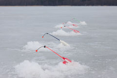 Lot of ice fishinng rods on the pond Royalty Free Stock Photography