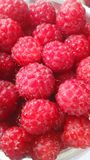 A lot of juicy ripe raspberries stock photography