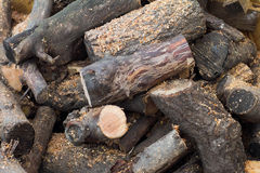 A lot of logs Royalty Free Stock Image