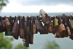A lot of love padlocks Stock Image