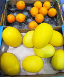 A lot of melon and oranges in market place Stock Photography