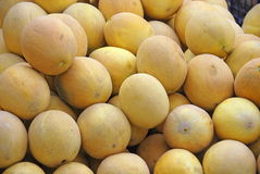 A lot of melons Royalty Free Stock Photos
