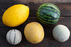 Lot of melons Royalty Free Stock Image