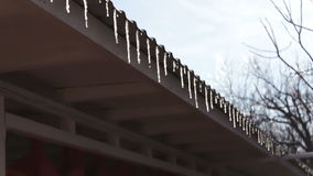 Lot of Melting icicles on a roof stock footage